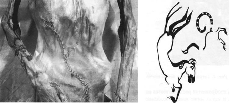 Namtar - Татуировки мумий из Пазырыка, ч.2