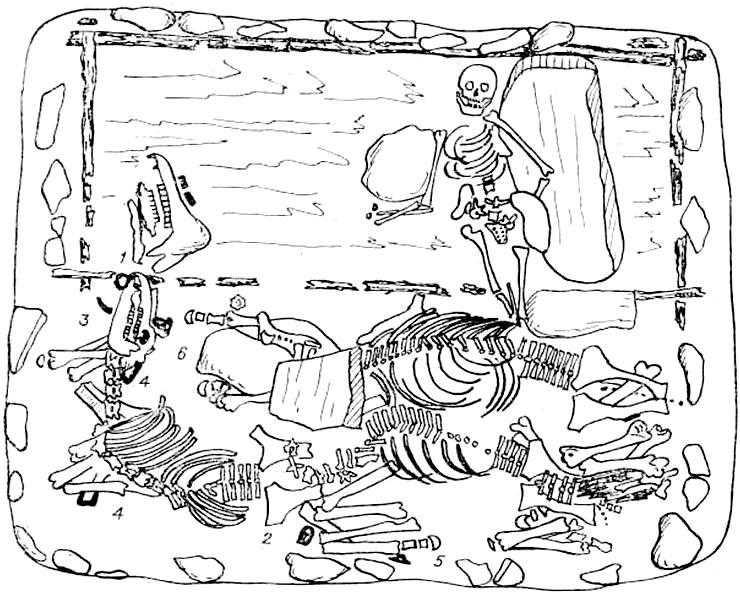 План захоронения лошадей в